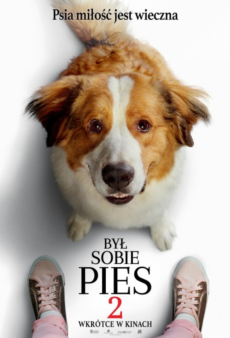 Był sobie pies 2